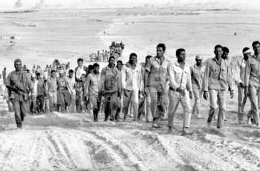 """الاعلان عن انطلاق حملة """"مفقودي فلسطين عام 67"""""""