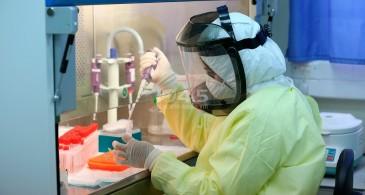 6 وفيات و569 إصابة جديدة بفيروس كورونا و562 حالة تعاف