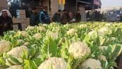 الإغلاق يُلحق خسائر فادحة بمزارعي أريحا والأغوار وبآلاف العمال