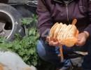 جامع الخبز