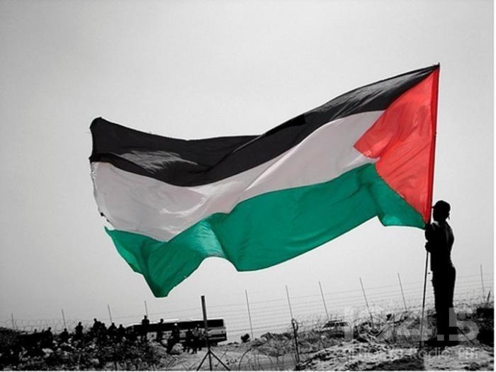 الجالية الفلسطينية بالنمسا والاتحاد العام للأطباء والصيادلة الفلسطيني ينظمان لقائأ تشاوري