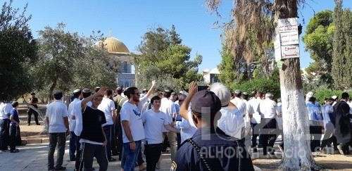 """2230 مستوطنًا اقتحموا الأقصى خلال عيد """"الفصح"""""""