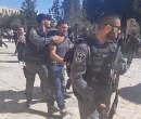 الاحتلال يعتقل مدير نادي الأسير وثلاثة مواطنين في القدس