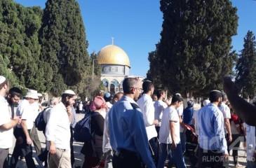 """دعوات يهودية لاقتحام جماعي للأقصى يوم العيد بذكرى """"خراب الهيكل"""""""