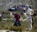 مستوطنون يهاجمون مركبات المواطنين جنوب نابلس